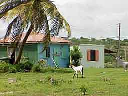 Anguilla: Rural charm in Sandy Ground
