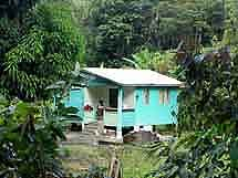 Dominica: Traditional house surrounded by lush green
