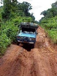Guyana: Bedford ruts obstruct the driving through the Iwokrama Forest between Annai and Kurupukari