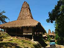 Kampung Tarung in Waikabubak/Sumba/Indonesia: Traditional village with straw thatched houses
