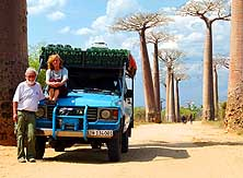 Madagaskar/Morondava: 27 Jahre 'on the road', hier in der 'All�e des Baobabs'