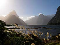 New Zealand/South Island: Evening at Milford Sound