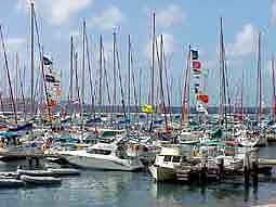 BVI: Masts at the 'Sunsail' Marina